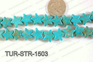 Howlite Star 15x15mm TUR-STR-1503
