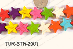 Howlite Star 20x20mm TUR-STR-2001